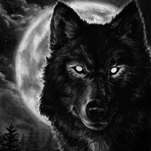 Acid On Sphere - Night Wolf (Original Mix)