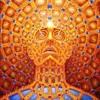 Acid trip (live)