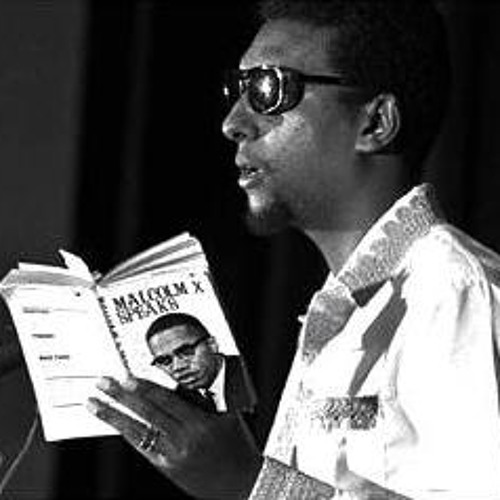Kwame Ture - Revolutionary Principles (Excerpt from The FBI and The CIA Speech)