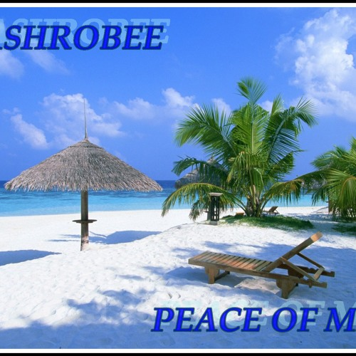 FlashRobee-Peace Of Mind(Original)[FreeDownLoad]