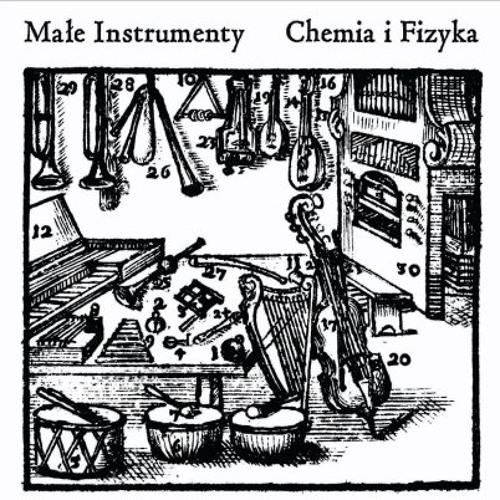 Problems with Chemistry on the Physics lessons (Problemy z chemią na lekcji fizyki)