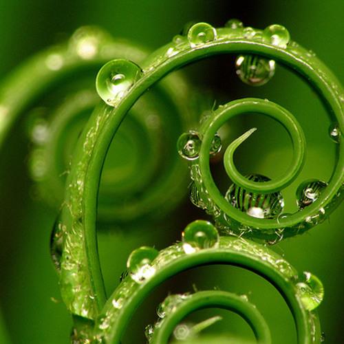 Spirals (Royalbox Music)