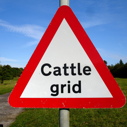 Bubaking - Cattle Grid (Free Download)