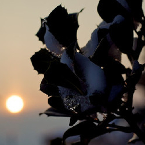 Halo - Late Winter Tales - 8.Sunset