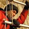 Ari Daniel Shapiro: Narwhal tagging in the arctic