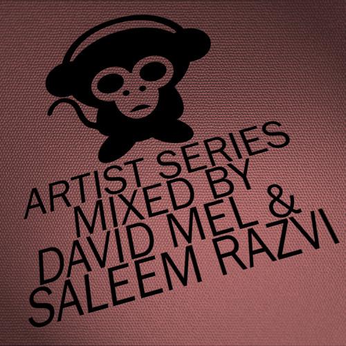 Housepital Artist Series Mixed By David Mel And Saleem Razvi