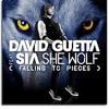She wolf david guetta dj alex