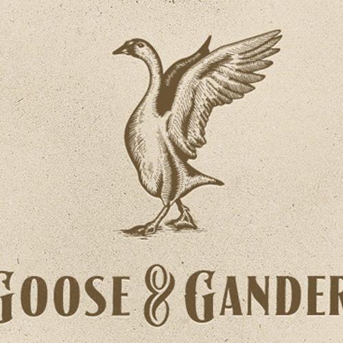 Goose & Gander (BBC Radio 1 B.Traits Rip 29 10 12)