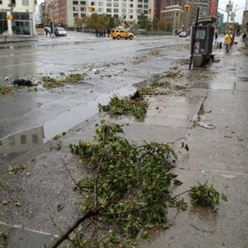 Hurricane Sandy: The Morning After
