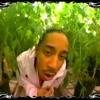 Ludacris - Blueberry Yum Yum (TYLR remix)