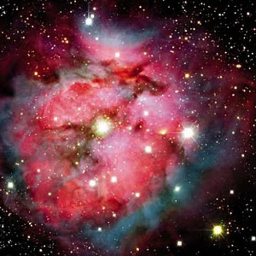 Amygdala projects - Stingray Nebula