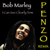 Bob Marley - I Can See Clearly Now (Penzo Remix) *FREE DOWNLOAD*