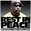 Nate Dogg - I got love (Dogg Master Remix)
