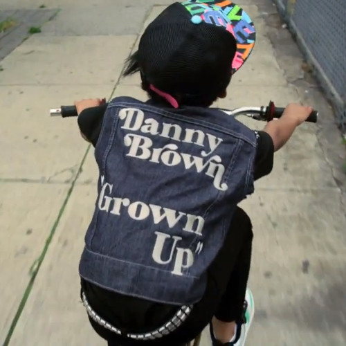Danny Brown - Grown Up (Funkanizer remix)