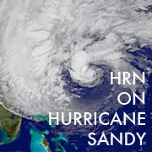 HRN on Sandy - Brooklyn Grange Bees