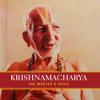 Class on the Bhagavad Gita