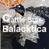 I drop Always with DJ TimeRuler in Cattle Star Balacktica