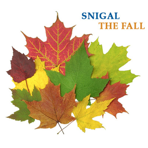 Snigal - The Fall(not mastered)