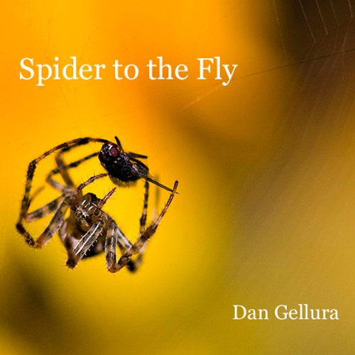Spider to the Fly (First Press)