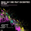 Sean Jay Dee feat Excentric - Ma Baby (Denis Sender remix)