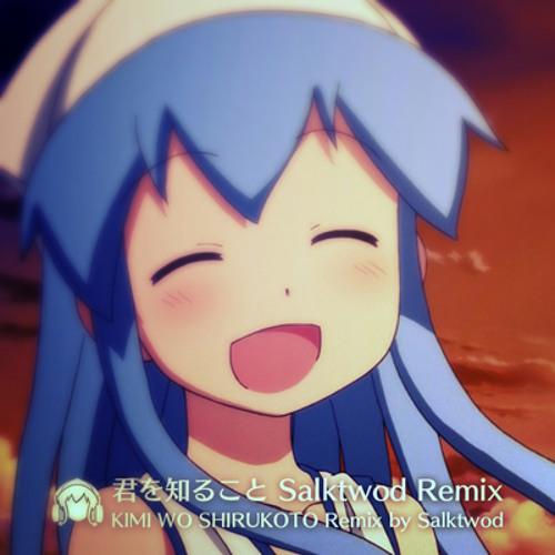 君を知ること (Salktwod Remix)