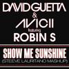David Guetta & Avicii feat. Robin S - Show Me Sunshine (Steeve Lauritano Mashup)