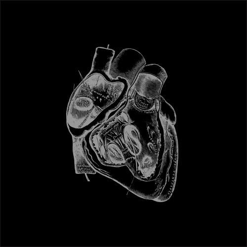 """Borealis - Voidness Remixed Part 3/12: """"Of The Heart Increased"""" Preview"""