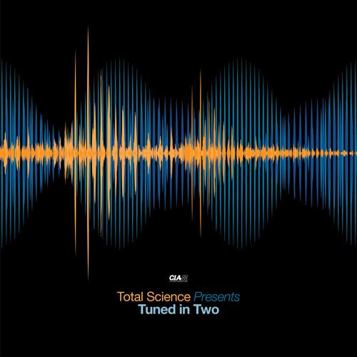 RIYA & ZERO T - STOLEN MOMENTS - TUNED IN 2 LP (CIA records)