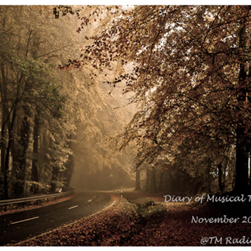 TheLuckyOne - Diary of Musical Thoughts - November 2012