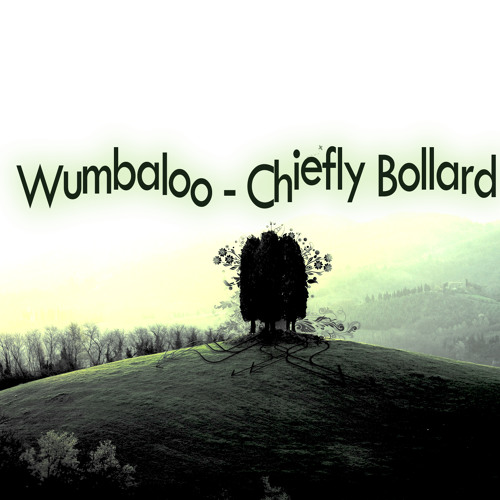 Wumbaloo - Chiefly Bollard (Original Mix)