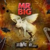 Mr.Big - Undertow