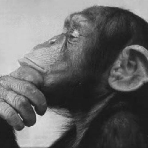 Monkeys*