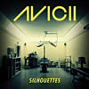 Avicii feat. Syn Cole vs Rogue - Adventure Silhouettes (Convect Mashup)