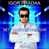 Adele - Set Fire To The Rain (DJ Igor PradAA Remix) * download in description