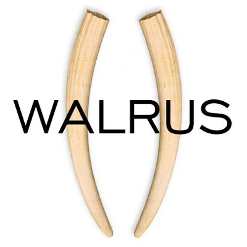 Epitome - Walrus [Gradient Audio] (Clip)
