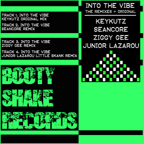 Into The Vibe - Junior Lazarou's Little Skank Mix