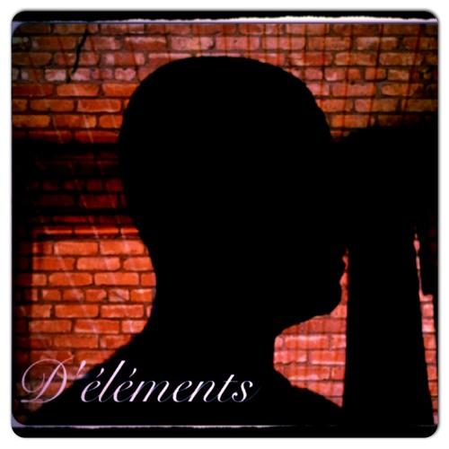 D ' Elements instru 2012 288