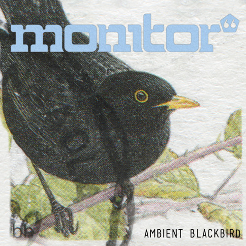Monitor 66 - Ambient Blackbird [Free Download]