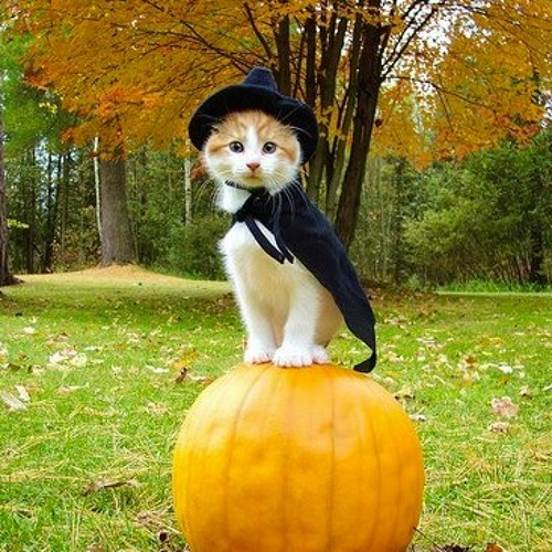 Dj Steck Sister - Happy Halloween