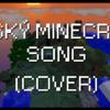 Český minecraft song cover