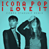 Icona Pop - I Love It (Feat. Charli XCX) (Cobra Starship remix)