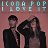 Icona Pop - I Love It (Feat. Charli XCX) (Sazon Booya Moombahton Remix)