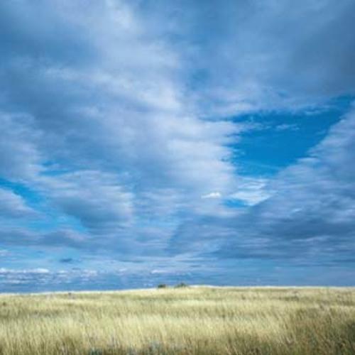 Prairie Wedding (MOCKUP)