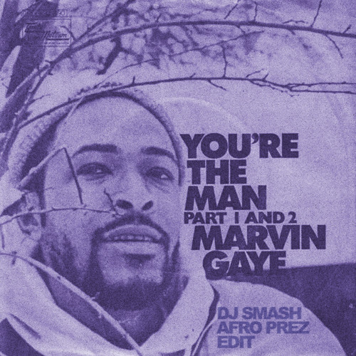 Marvin vs. Fela : You're The Man [DJ Smash Black Prez-edit]