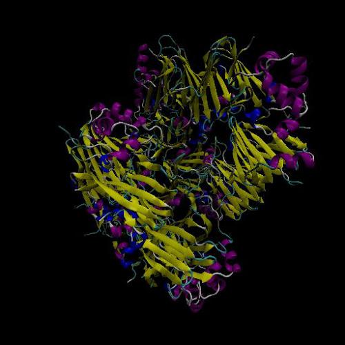 Molecular DJ - AraH1