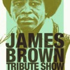 James Brown Tribute Show - get up offa that thing LIVE