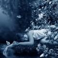 Richard Wagner - Der Traum an die Sommernacht