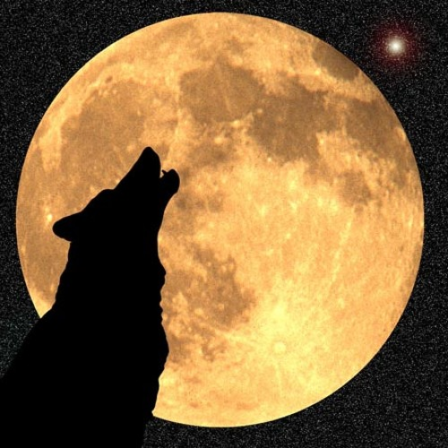 The Wolf (Original Mix)
