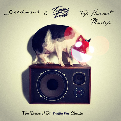 Deadmau5 vs Tommy Trash - The Reward Is Truffle Pig Cheese (Top Harvest Mash) Read Description