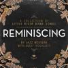 Home On Monday - Jazz Nouveau (feat Anita Spring)